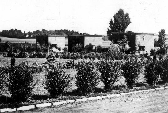 Maisons cp avec jardins