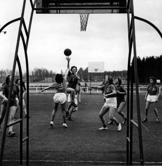 Scb basket filles arriere panneau