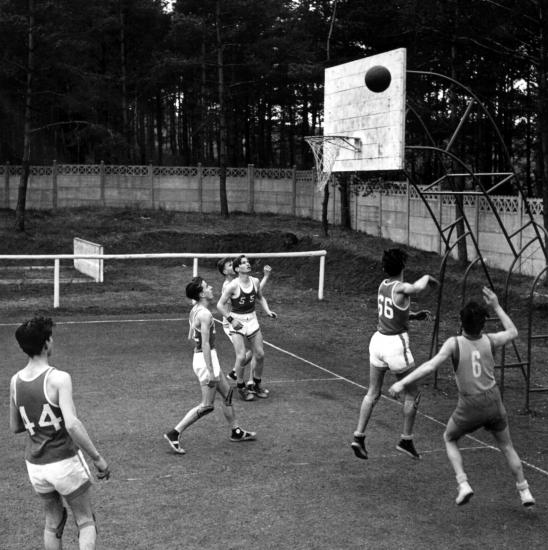Scb basket hommes