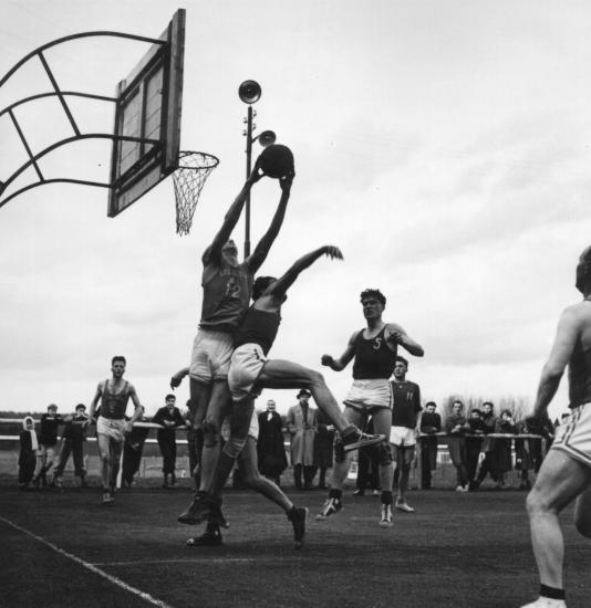 Scb basket